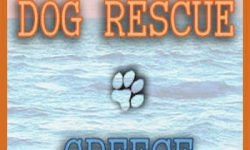 Dog Rescue Greece logo old